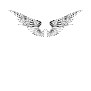 Engelsflügel / Flügel / Fliegen / Freiheit / Engel