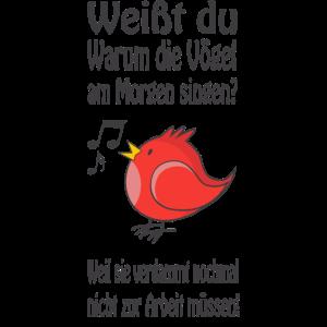 Weißt du, warum die Vögel am Morgen singen?
