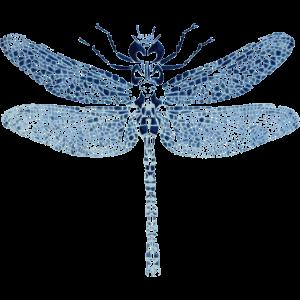 Libelle Schmetterling