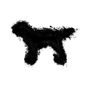 Hund Tier hell glühend