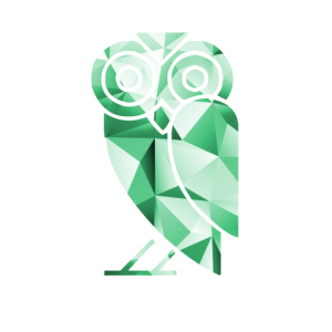 geometric owl eule