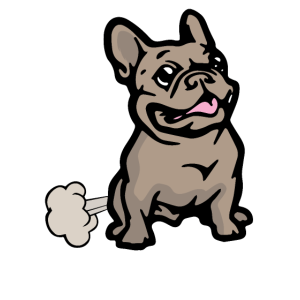 Französische Bulldogge Haustier Hund Kuscheltier