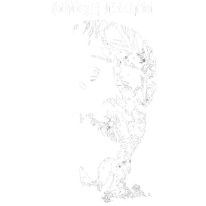 Aristotle front