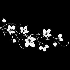 Blätterast. Blütenast. Lotusstil.