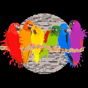 Bunte Papageien-Schar - Farbkleckse auf dem Kreis