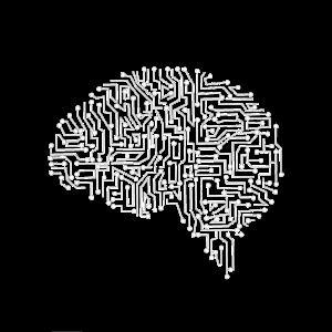 Gehirn Schaltkreis weiß
