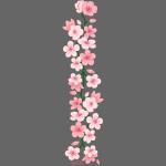 yuka cherry blossom