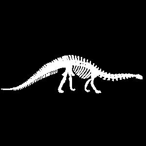Brontosaurus - Skelett