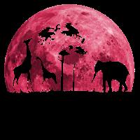 cooles Safari Geschenk Shirt