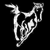 Pferdesport Geschenk Pferd
