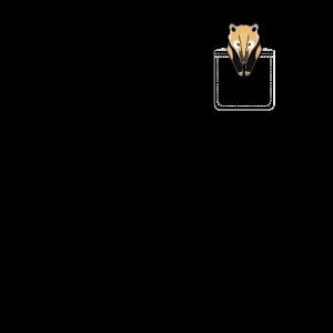 waschbär in der tasche nasenbär pocket racoon