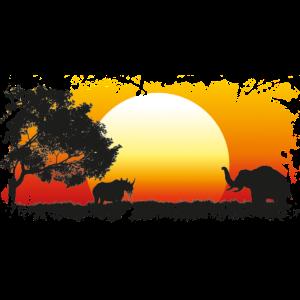 Afrika Sonnenuntergang Elefant Rhinozeros