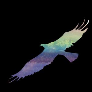 Adler (Fade)