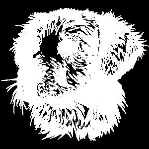 Hundekopf - Golden Retriever