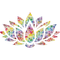 Bunte Blume schön Shirt Geschenkidee Lotusblume