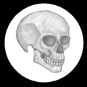Totenkopf / Schädel / Totenschädel