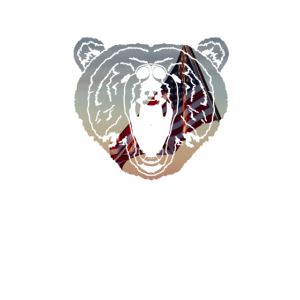 Grizzly Amerika