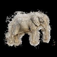 Elefant Afrika hell glühend
