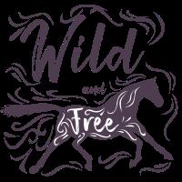 Reiten Pferde Sport Tier Dressur Reiter Hobby Idee