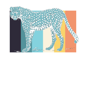 Gepard Geparden
