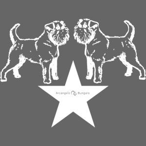 Brussels Griffon star