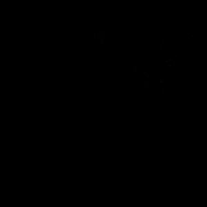 Hirsch des Waldes