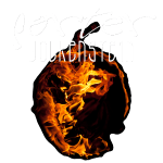 wolkenstein_shirt