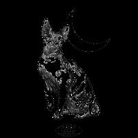 Katze Spynx Pentagramm Mond Nacht Hexe Sterne