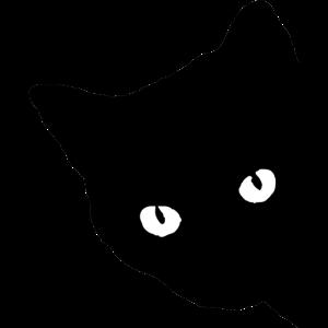 schwarze Katze Geschenk Tierliebe