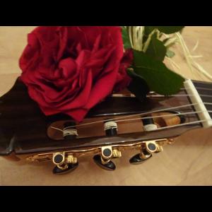 Gitarrenrosen