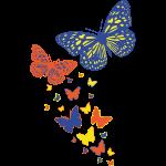 AL Butterfly