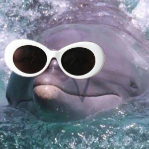 Dauphin à lunettes