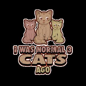 Katzendame