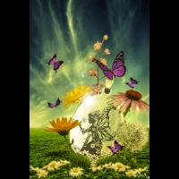 Blumenelfe by Katharina Fairytale