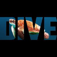 Dive turtle Schildkroete Tauchen