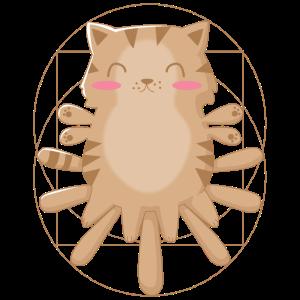 Katze Anatomie Wissenschaft Kunst