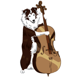 Jazz Border Collie Hund spielt Bass