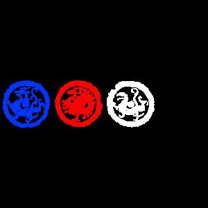 Vier Symbole