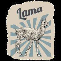 Lamas Kamele Zoo Cooles Geschenk
