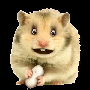 Hamster mit Computermaus - musicmaker12