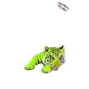 Tiger Shirt Randy Design