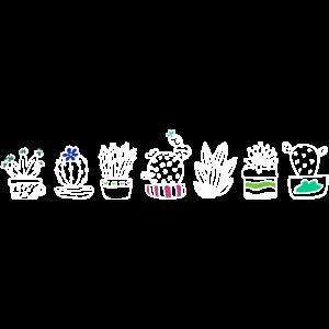 Kakteen in einer Reihe.