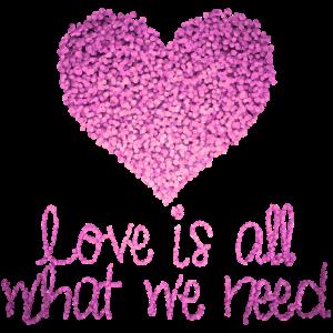 Glitzer Herz Liebe ist alles was wir brauchen