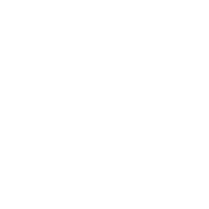 Ecocide kills us white letters