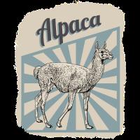 Alpakas Kamele Peru Geschenk
