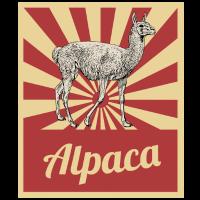 Alpaka Pako Alpakawolle Geschenk