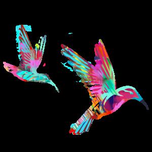 kolibri, vögel, 2 vögel, aquarell, bunt,vogel,bird