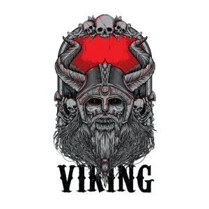 Viking Design 02
