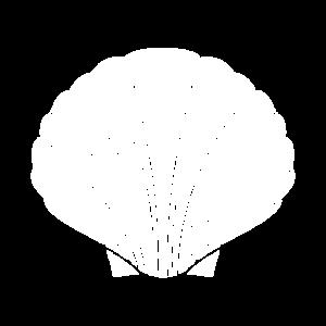 Nautik Design T-Shirt Muschel klassisch