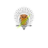 SHIRT OWLS J 002